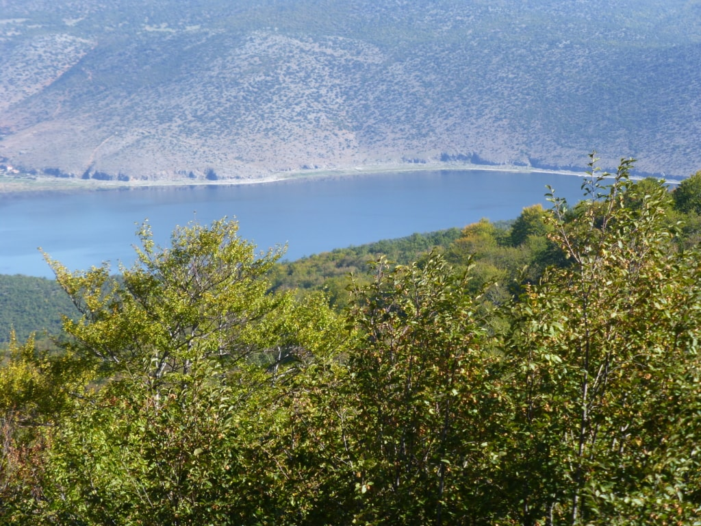 View of Prespa lake - Protected area guides for Albania/Nature Experience Albania