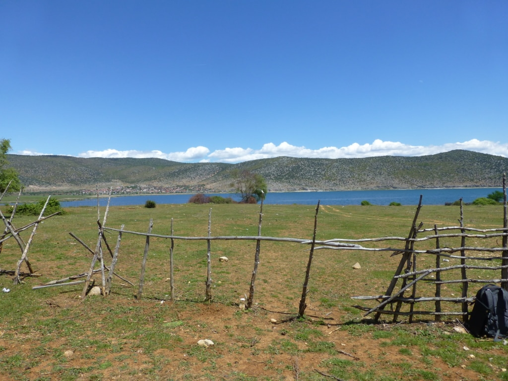 Blick auf den Prespa See - Schutzgebietsguides für Albanien/Naturerlebnis Albanien