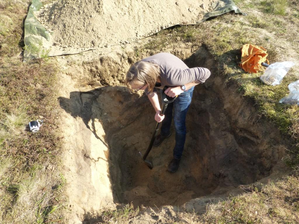 Znl Inspiziert Bodenprofil Certified Tour Guide Inspecting Soil
