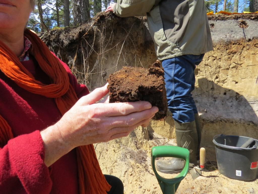 Terolog Weiterbildung Bodenwahrnehmung für Natur- und Landschaftsführer in Schutzgebieten
