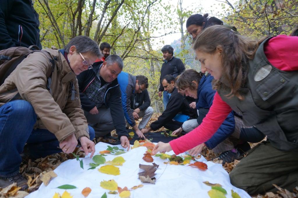Workshop In Rila Bulgarien 2018 12